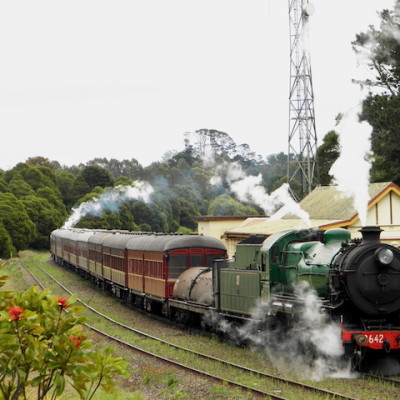 Heritage steam train visit